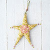 Winter Jewel Star Ornament