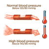 High Blood Pressure 101