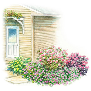 small space shade garden plan for the south - Shaded Flower Garden Ideas