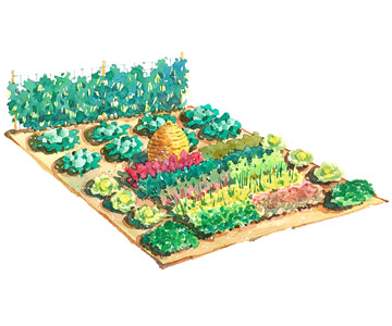 Large Scale Vegetable Garden Plan