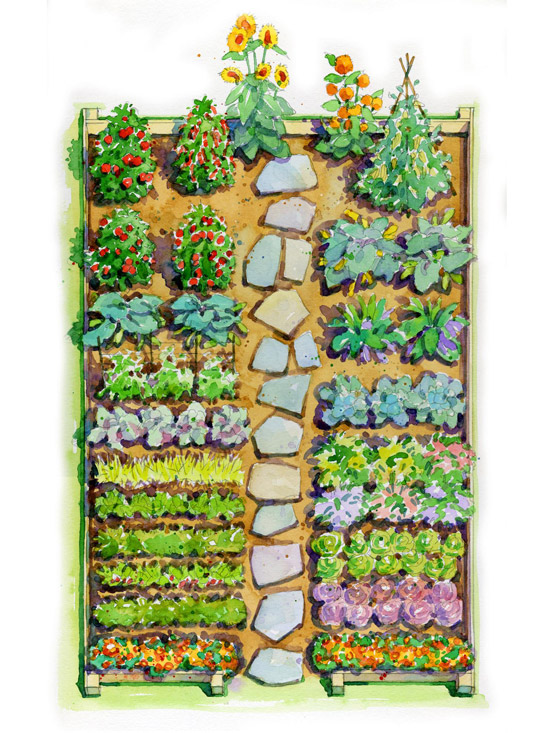 Easy children 39 s vegetable garden plan for Vegetable layout