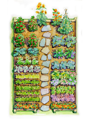 easy childrens vegetable garden plan