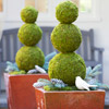 Shop Outdoor Pots & Planters
