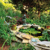 Use Dry Stack as Water Garden Edging