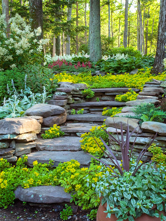 Garden Design With Hillside Landscaping Ideas Backyard Pictures From Bhg