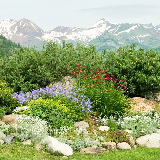 Rock garden design ideas for Rockery designs for small gardens