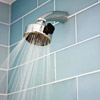 Replace Your Showerhead