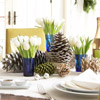 Tulips and Pinecones Holiday Centerpiece