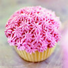 Pink Flower Birthday Cupcakes