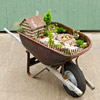 Care for Your Miniature Landscape