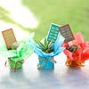 Mini Cactus Favors