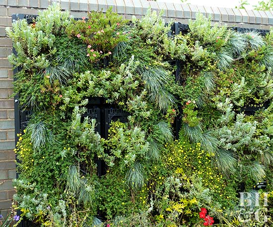 Vertical Gardening Ideas vertical gardening ideas Vertical Gardening