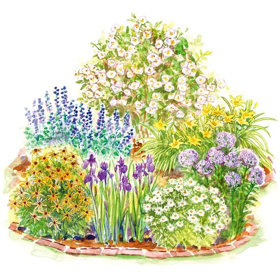 Easy care romance garden plan for Free perennial flower garden designs