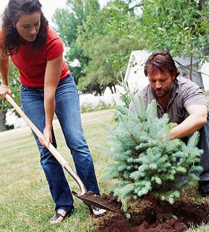Earth Day Ideas and Activities from Better Homes and Gardens