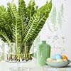Fern Centerpiece Display