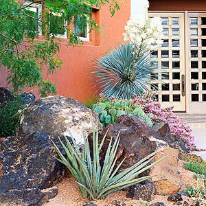 place big money plants where theyll be most often seen rasmussen always uses large plants and striking plant combinations to mark a homes entryway