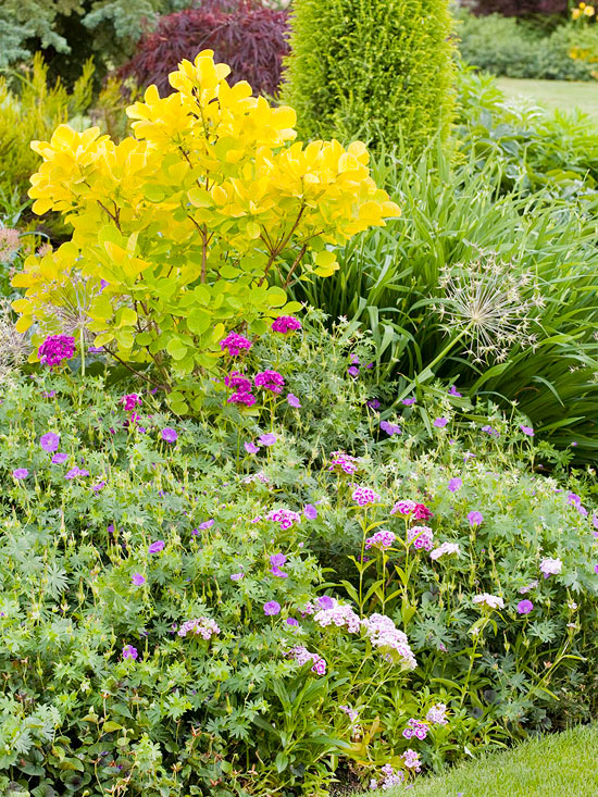 tips for successful flower garden design