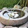 Create a Concrete Birdbath