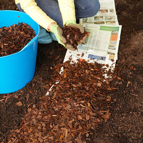All About Garden Mulches