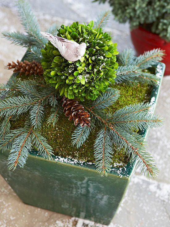 Blue Spruce Twig Container