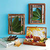 Leaf Frames and Art