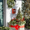 Get Seasonal Color with Containers: Holiday