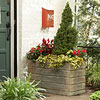 Get Seasonal Color with Containers: Summer