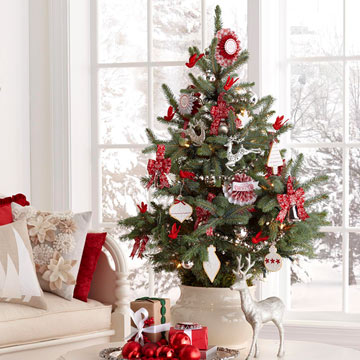 Tips for a Beautiful Christmas Tree