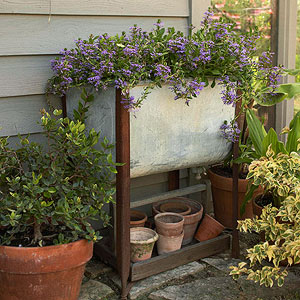 Attractive Whether You Use It With Houseplants Indoors, Or For Window Boxes Outside,  Potting Soil Is An Essential Element In Any Garden Container.