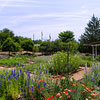 Herb and Physic Garden