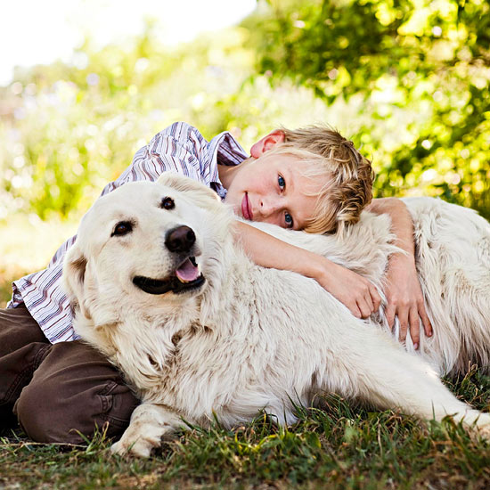 Six Tips for Caring For Aged Pets
