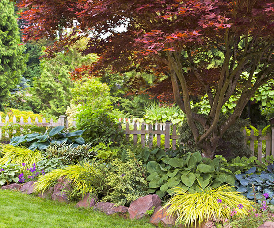 Create an All-Star Yard and Garden
