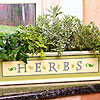 Windowsill-Ready Herb Planter