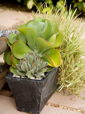 Find Your Perfect Container Design