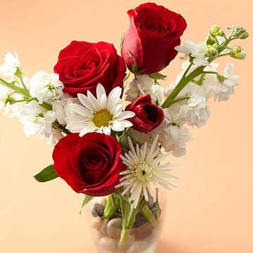 What's the Best Flower for Your Sweetie?