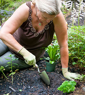 How to plant around a pond for Garden pond insert