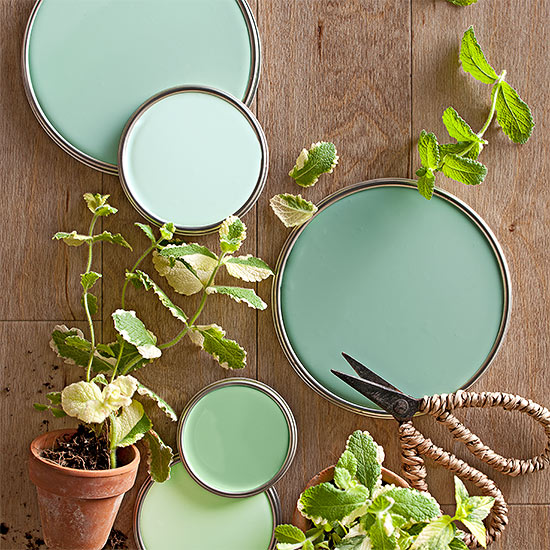 mint green paint colors - Celadon Paint Color