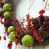 Hedge Apple Grapevine Wreath