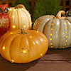 Light Bright Pumpkins
