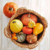 Harvest Pumpkin Basket