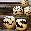 Pumpkins with Bat Stamps
