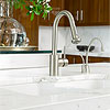 Elegant Divided Kitchen Sink