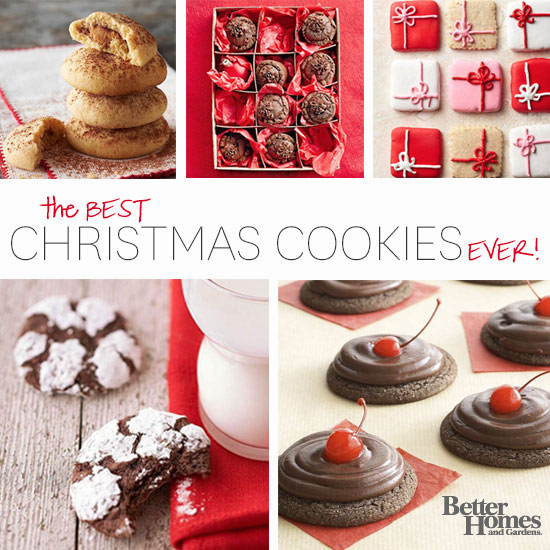 The best christmas cookie exchange recipe