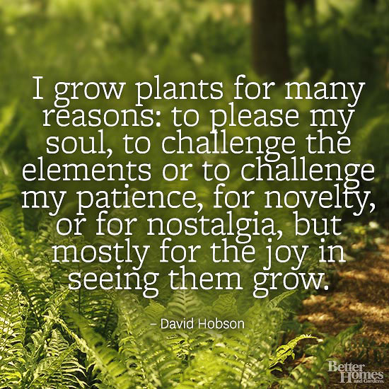 quotes on essay my hobby gardening
