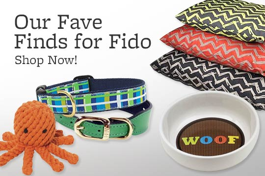 Our Fave Finds for Fido -- Shop Now!