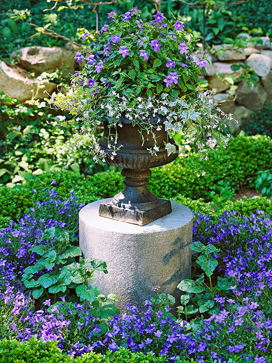 How to Use Cool Colors in the Garden