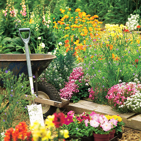 How to Combine Colors in the Garden