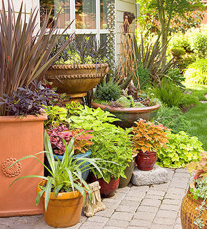 How To Group Container Gardens Together Part 35