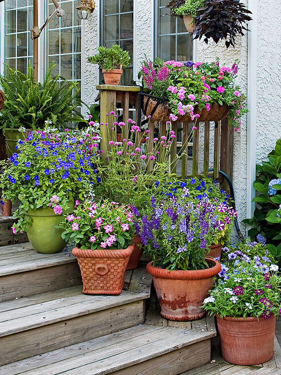 . How to Group Container Gardens Together