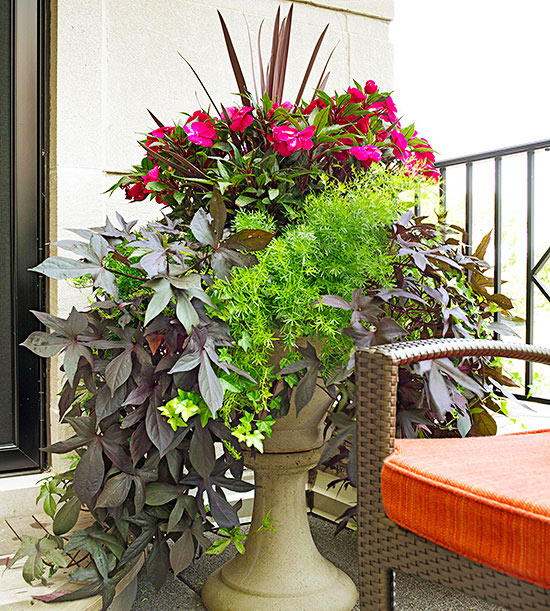 Container garden design basics for Como decorar mi jardin con plantas